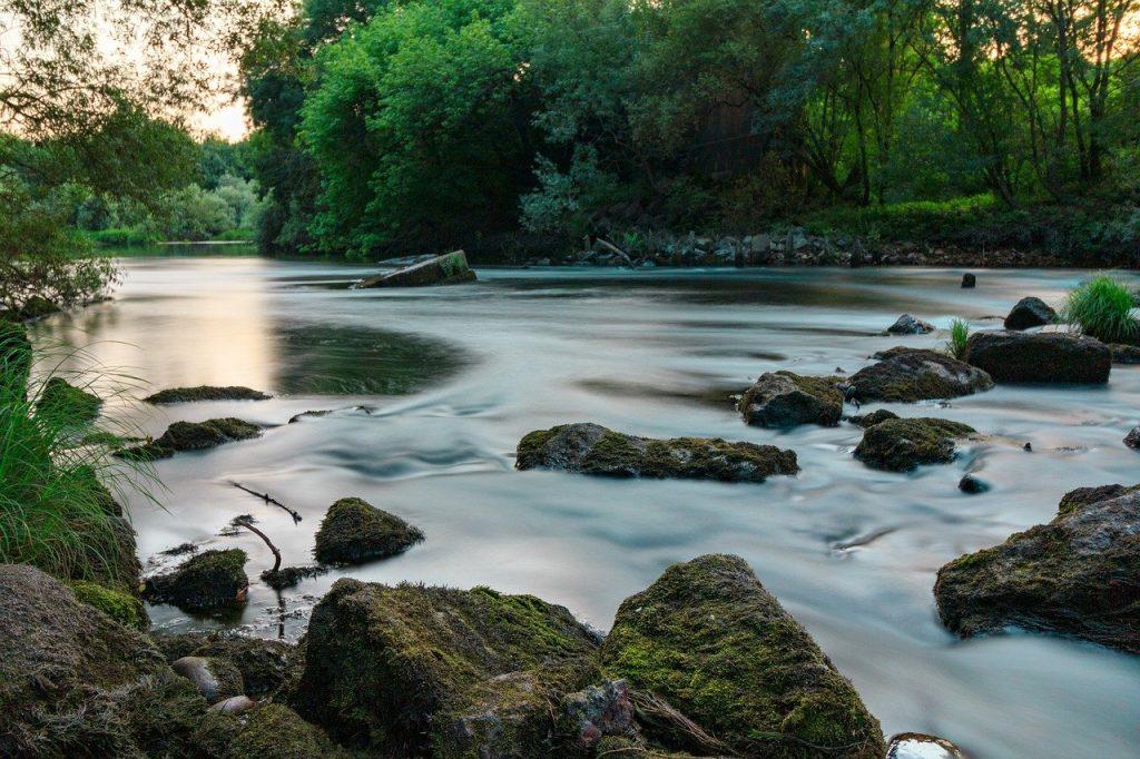 river, tea, miño-5330961.jpg